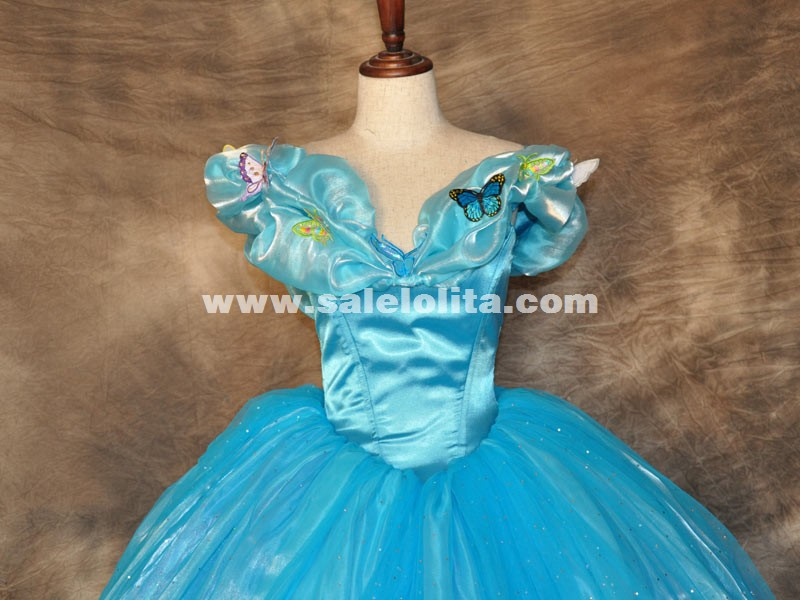 Blue Cinderella Dresses Detail