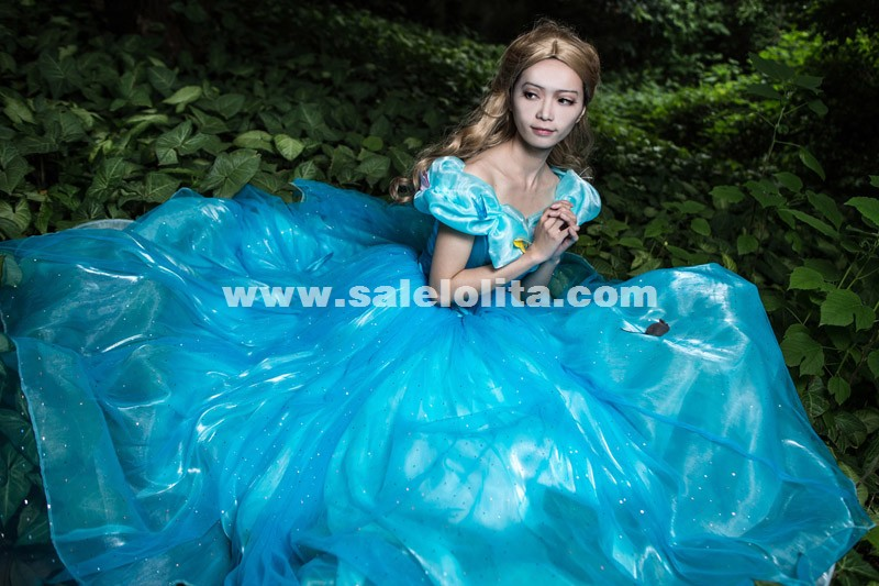 Women Blue Deluxe Cinderella Cosplay Dresses Costume Customized