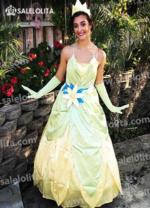 The Princess and the Frog Cosplay Princess Tiana Dress Adult ...