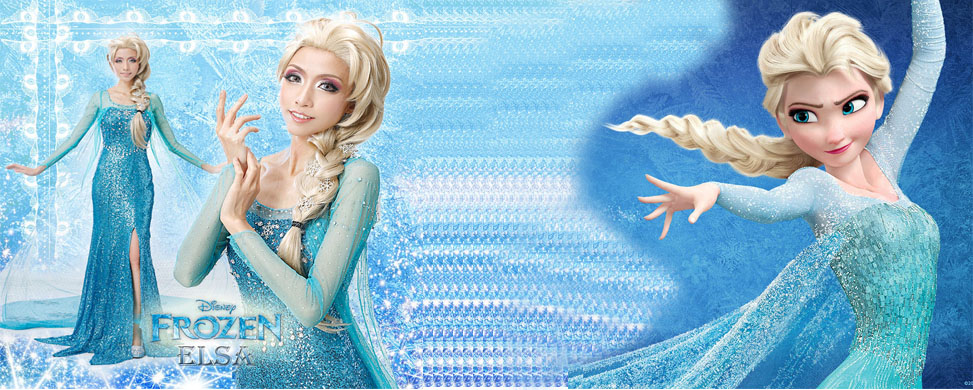 2014 new arrival frozen elsa dress costumes for adult